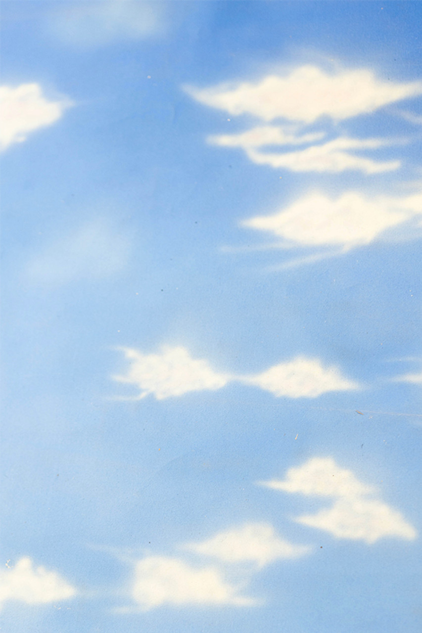 Hand Painted Canvas Backdrop - Clouds - 4' x 6'   .
