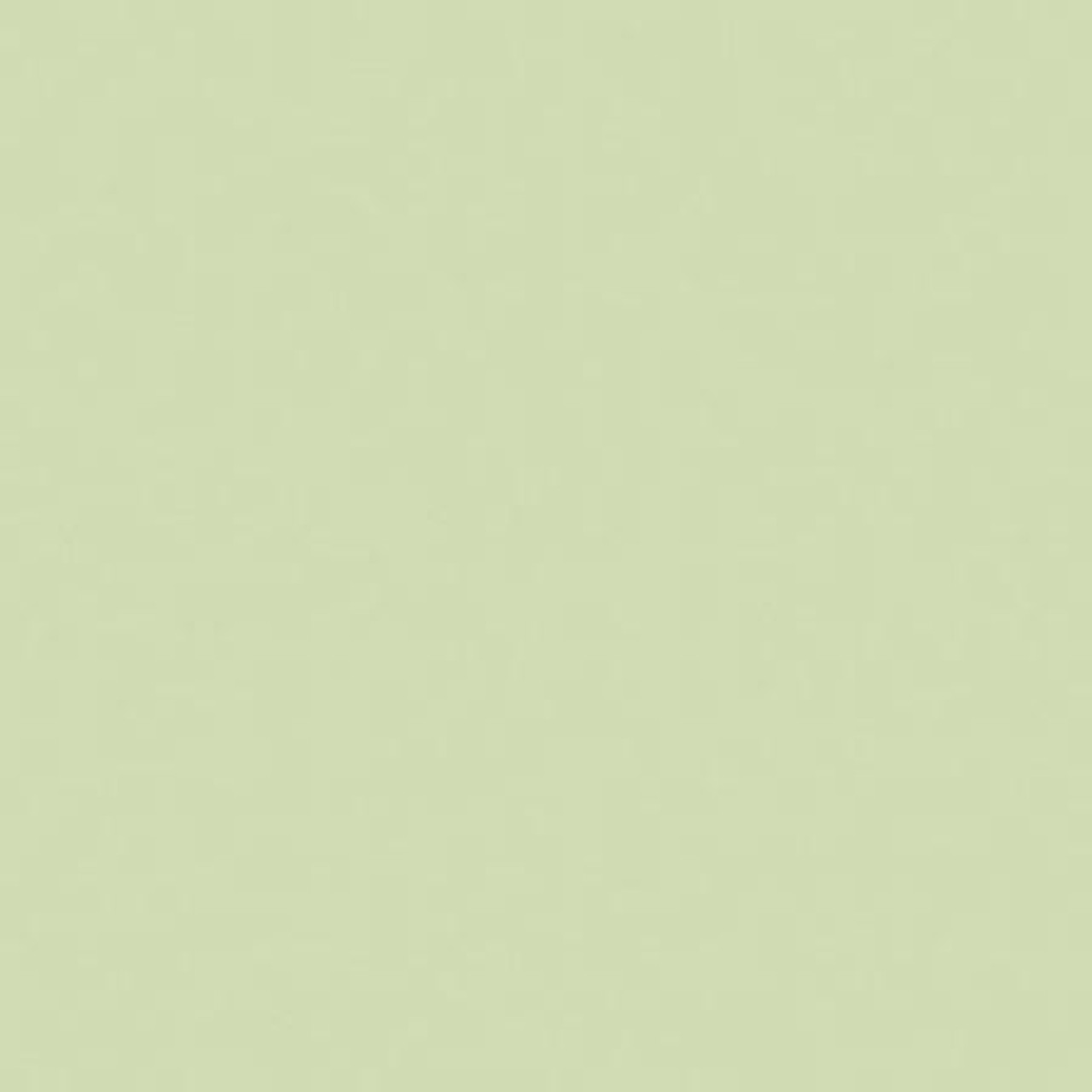 #0087 Rosco Gels Roscolux Pale Yellow Green, 20x24""