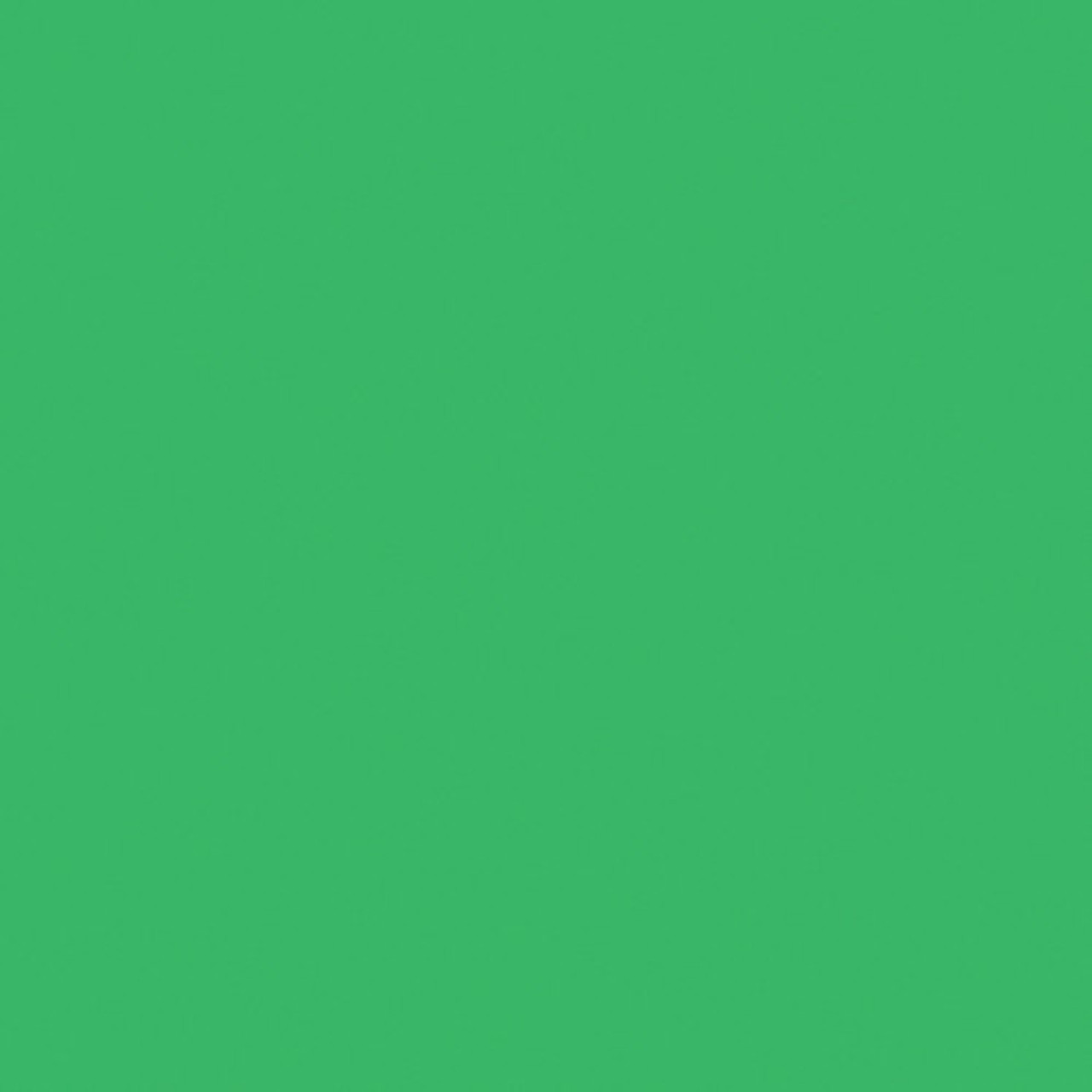 #0389 Rosco Gels Roscolux Chroma Green, 20x24""