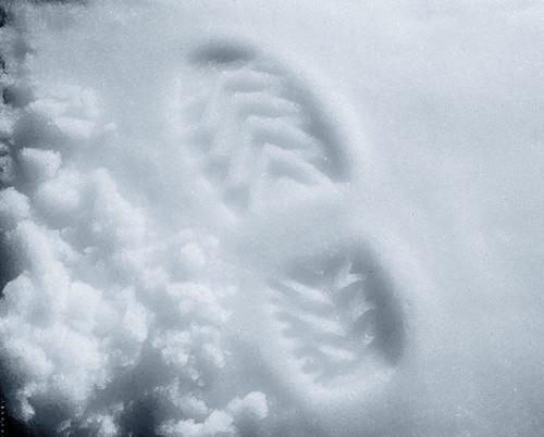 12349 - Crystal Snow 6 oz