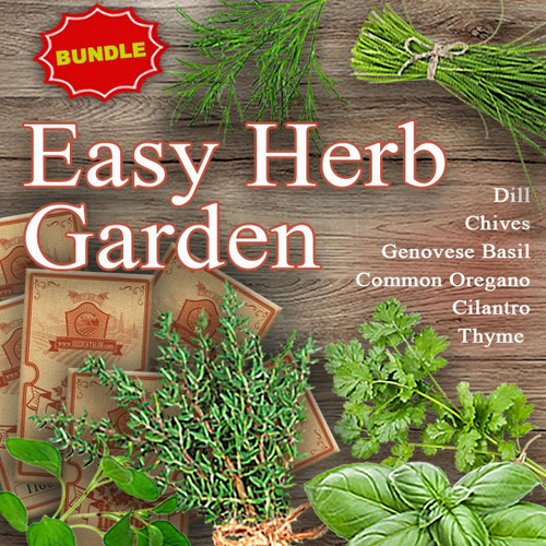 SeedCatalog Easy Herb Garden Bundle