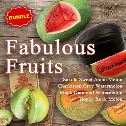 SeedCatalog Fabulous Fruits