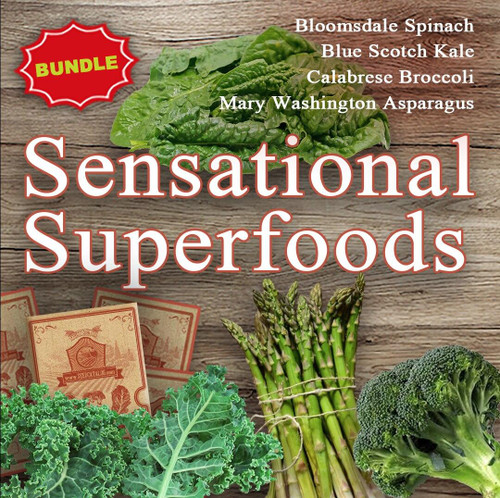 SeedCatalog Sensational Superfoods