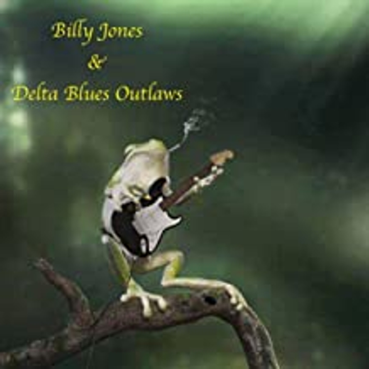 BILLY JONES & THE DELTA OUTLAWS