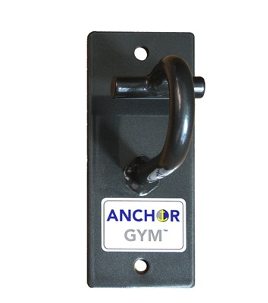 Anchor Gym H1 Suspension Hook