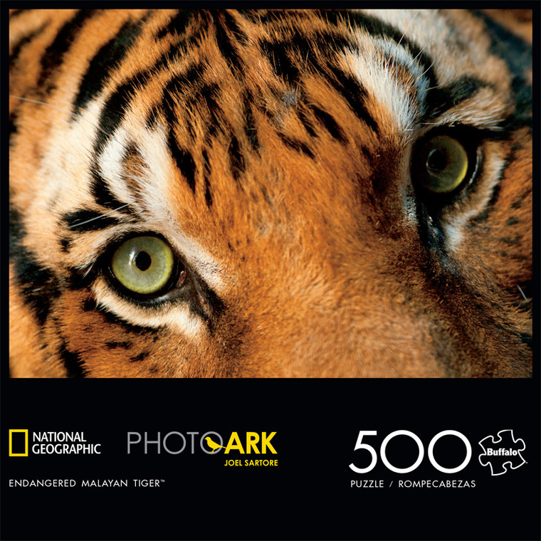 National Geographic's Photo Ark Endangered Malayan Tiger 500 Piece Jigsaw Puzzle Front