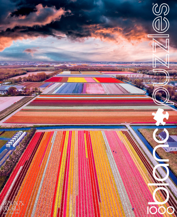blanc Infinity Fields of the Netherlands 1000 Piece Jigsaw Puzzle Front