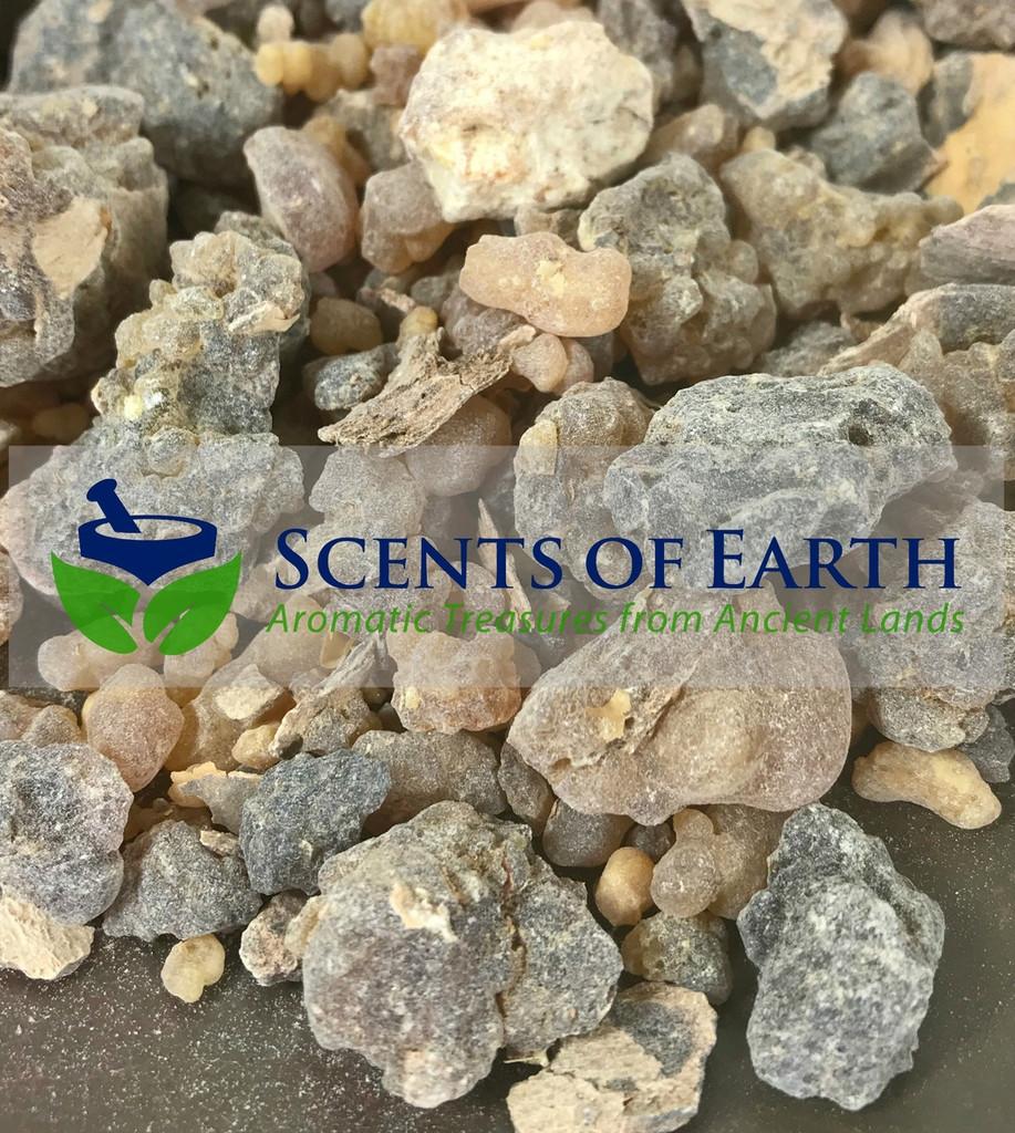 Frankincense (Boswellia carteri) - Ethiopia