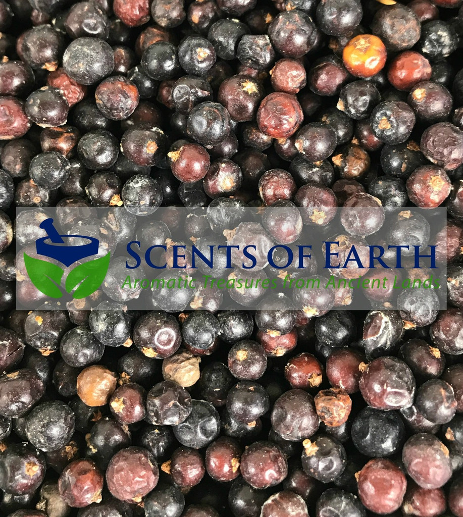 Juniper Berries - Whole - (Juniperus communis) - USA