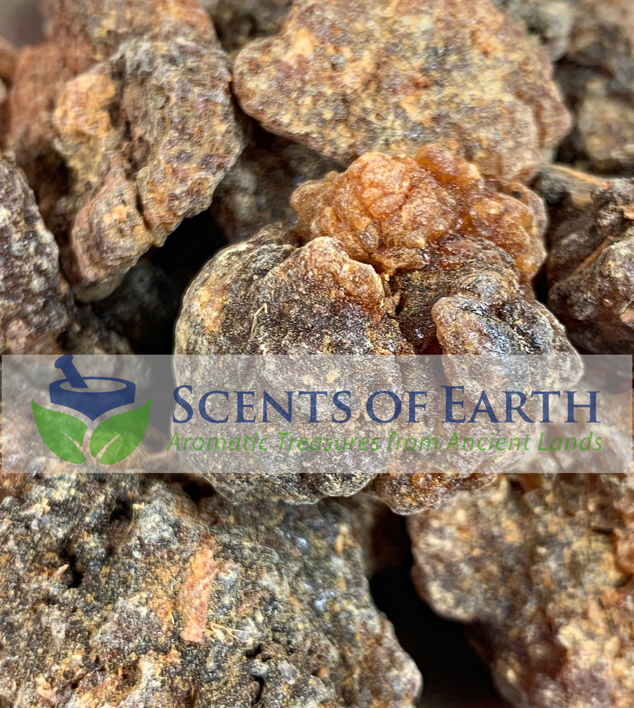 Myrrh Chunks (Commiphora kua) - Socotra
