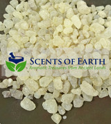 Dammar Gum Resin - White (Shorea wiesneri) - Indonesia