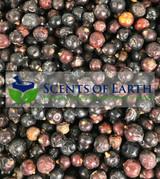 Juniper Berries - Whole - (Juniperus communis) - USA
