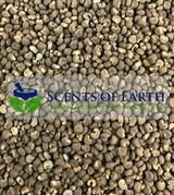Musk Seeds (Abelmoschus moschatus) - India