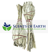 White Sage Mini Smudge Bundles (2 pack)