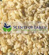 Sandarac Gum Resin (Tetraclinis articulata) - Morocco