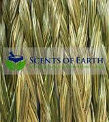 Sweet Grass Braid (Heirochloe odorata) Canada