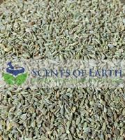 Anise - Seed (Illicium verum) - China