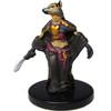 Gnoll Spellcaster #39 Dungeons Deep Pathfinder D&D Miniatures
