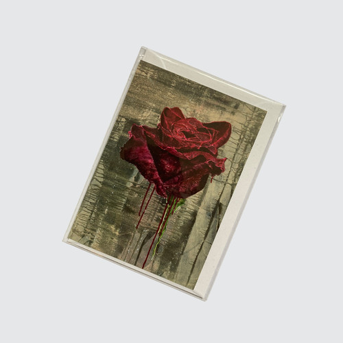 Blank Greetings Card with Crimson Rose design in biodegradable cello with envelope