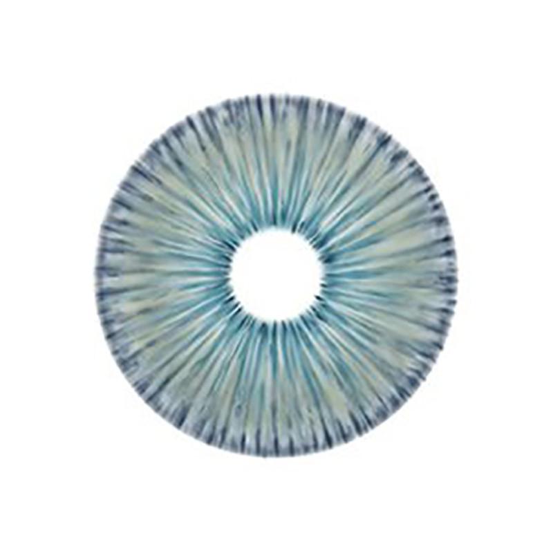 New York N Blue Circle Lenses