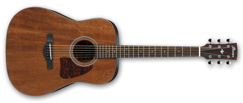 Ibanez AW54 Artwood Acoustic Guitar