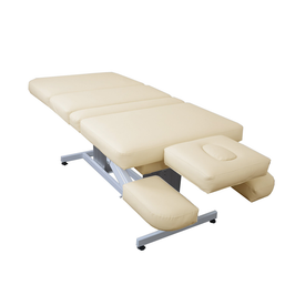 Touch America Electric Lift/Tilt Massage Table, EMBRACE, Almond