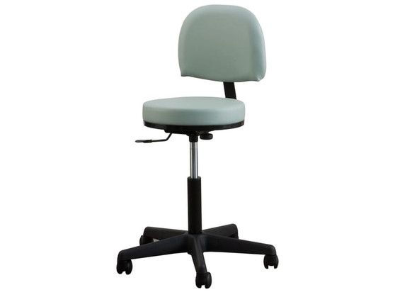 Oakworks Massage Therapist Premium Stool, Backrest