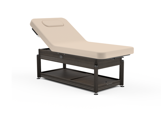 Oakworks Massage Table, Electric Lift-Assist Backrest, CLINICIAN in walnut finish