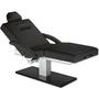 Earthlite Electric Lift Massage Table, Salon, EVEREST SPA PEDESTAL, Black with Salon Package