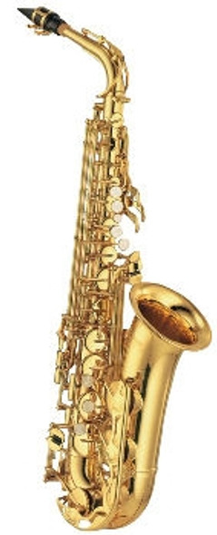 Alto Saxophone Outfit J Michael