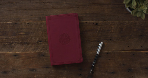 This Bible is the English Standard Version in easy to read type.  The ESV Premium Gift Bible is a thin Bible at an affordable price.