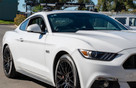 SeaSucker Monkey Bars on Ford Mustang
