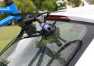 2021 SeaSucker Hornet with bike attached