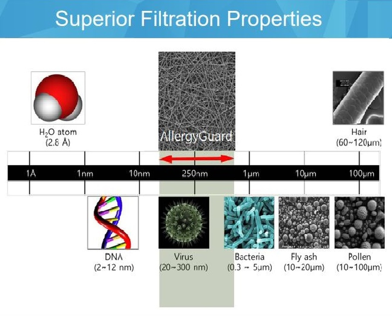 Allergy Filter Screens