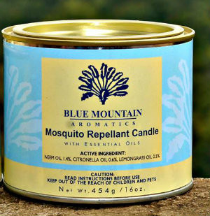 16 oz Mosquito Repellent Candle (neem)
