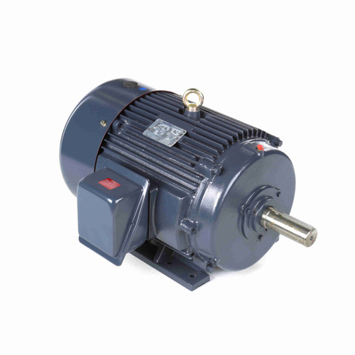 GT1129A Globetrotter Three Phase Totally Enclosed Rigid Base Motor 25 HP
