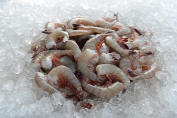 Extra jumbo headless shrimp frozen on ice.