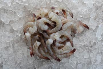 Jumbo tail-on shrimp frozen on ice.