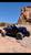 Polaris RZR XP4 1000 2014-2019 Reaper Radius Short Cage | XFR
