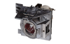 ViewSonic RLC-116 Replacement Lamp Module