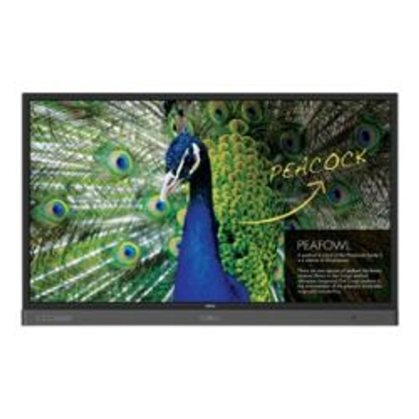 QOMO QIT1465 4K multi-touch LED panel