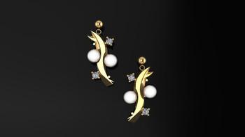 Ornament- Earrings