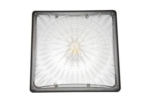 45 Watt LED Canopy Light, 5300 Lumens - Tumbnail CAN45