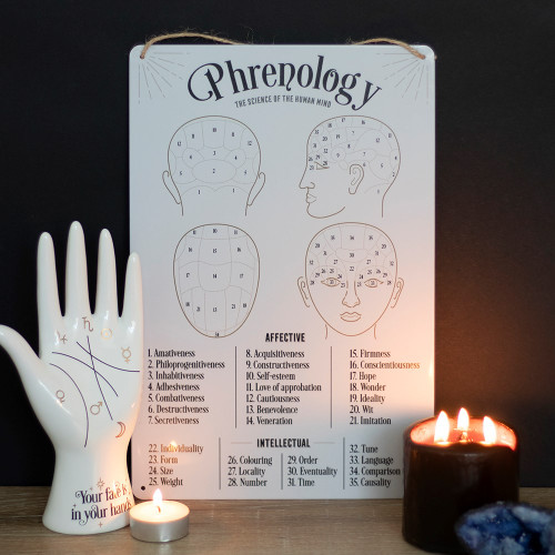 Phrenology Map Metal Sign