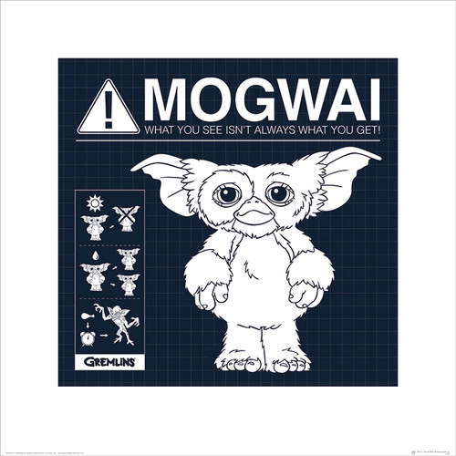 Official Gremlins Mogwai Rules Art Print