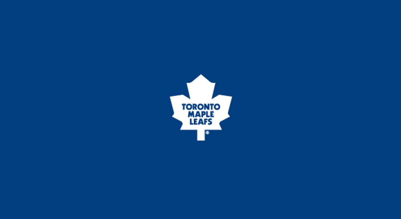 Toronto Maple Leafs Pool Table Felt 8 foot table