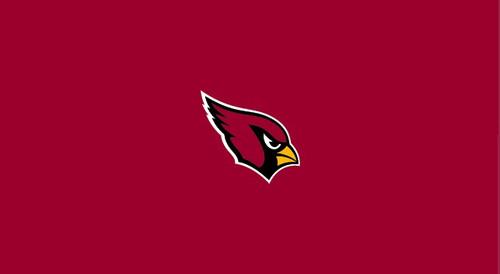 Arizona Cardinals Pool Table Felt for 9 foot table
