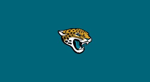 Jacksonville Jaguars Pool Table Felt for 9 foot table