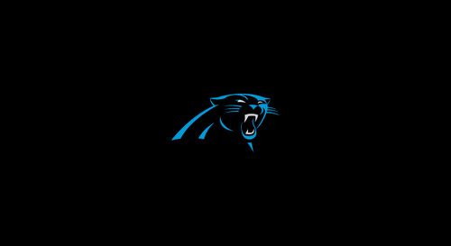 Carolina Panthers Pool Table Felt for 9 foot table