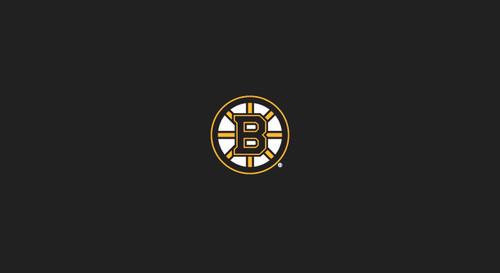 Boston Bruins Pool Table Felt 8 foot table